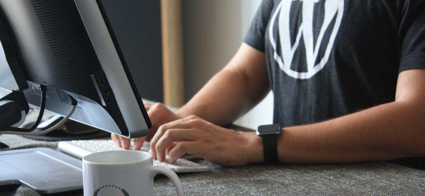 WordPress hjemmeside? Få overblikket…